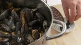 molusco : Closed mussels being removed from the pot Stock Footage