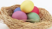 multicolorido : Coloured eggs in Easter nest