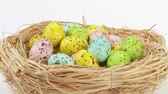 multicolorido : Coloured quails eggs in Easter nest