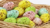 разноцветные : Coloured quails eggs in Easter nest