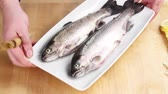 in twos : Two ready-to-cook trout on a plate