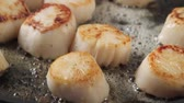 molusco : Frying scallops in a pan Stock Footage