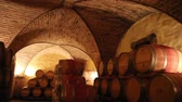 vinificação : Barrels in a wine cellar at the Skoff winery in Gamlitz, Südsteiermark, Austria Stock Footage