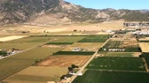 semear : Aerial shot of Nephi, Utah yellow fields and crops. Stock Footage