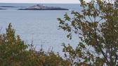 yat : Looking out between trees at a rocky outcropping off the coast of Marblehead, Massachusetts. Stok Video