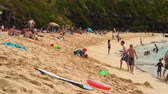 brinquedos : Many people and families visit a clear beautiful beach in Hawaii