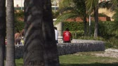 fitness : A shot of a walking path in Miami. People are walking, biking, and rollerblading. Stock Footage