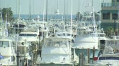 релаксация : A shot of boats at a marina in Miami.