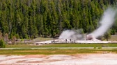 извержение : Time-lapse shot of people watching a geyser in Utah. This was taken during the day. Tall pine trees can be seen in the background. Стоковые видеозаписи