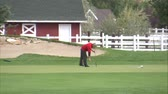 сарай : A medium shot of a golfer on the green. He sinks the putt and cheers as he retrieves his ball.