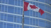 ano : Medium shot of the Canadian flag blowing in Vancouver.