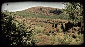 overlooking : Slow zoom overlooking mountain valley filled with colorful autumn trees and grass. Vintage stylized video clip.