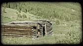 stráň : Pan of old abandoned log cabin with no roof surrounded by grass,bushes,and wildflowers with mountain hillside covered with pine trees in background. Vintage stylized video clip. Dostupné videozáznamy