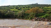 golan : White water rapids on the reddish brown River Jordan in the Galilee of Israel. In the background is a hillside covered with orange, yellow and green foliage. Stock Footage