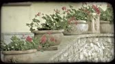 garnek : A line of potted plants sit atop a stone wall in Italy. Vintage stylized video clip.