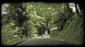 europa : Shot of a street in Italy covered in shadows by trees that line the sides. Vintage stylized video clip.