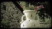 wazon : Shot of a garden vase with a flower planted inside in Italy. Vintage stylized video clip.