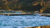 kamie�� : Israel, Mediterranean rocky coastal shot at Dor Beach panning left to right at sunset. The light contrast from bright waves to dark layers of rock, back to bright sun on the rocky outcrops. Shot with the Red One digital camera at 4k 4096 x 2304 resolution