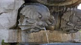 waterworks : A stone-carved fish head spits water into the basin of its fountain, which is attached to the Lateran Obelisk.