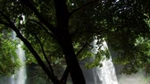 bosques : Two waterfalls dropping into a pond with tree and green plants surrounding them.