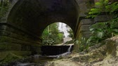 tijuca : Tracking shot Looking through a stone archway in a dense jungle setting with a waterfall beyond in Tijuca National Park, Rio de Janeiro, Brazil. Filmed June 24, 2013. Stock Footage