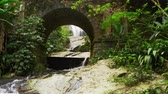 tijuca : Tracking shot of a scenic arched bridge with lush jungle foliage in Tijuca National Park, Rio de Janeiro, Brazil. Filmed June 24, 2013.