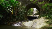 tijuca : Tracking footage of a scenic arched bridge with lush jungle foliage in Tijuca National Park, Rio de Janeiro, Brazil. Filmed June 24, 2013.