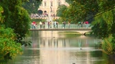 pontes : People on a bridge spanning a pond with a fountain in the background. Stock Footage