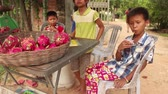 Group of youngsters selling dragon fruit at a  in small table by the roadside in rural southeast Asia