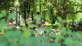 cherry : People walking relaxed in the park in a hot summer sunny day. Stock Footage