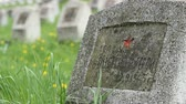 camarada : A Red Army soldier grave, on a military cemetery, dead on war fightings of WWII. Stock Footage