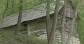 kabina : Old poor chalet in the woods with stone foundation. Dostupné videozáznamy