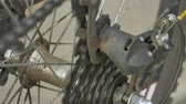 sprocket : Bicycle cogset and rear derailleur mechanics running.