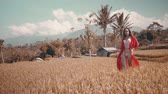 crochê : Beautiful young woman in red transparent dress walking along the rice field - video in slow motion