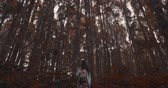 мечты : Beautiful brunette woman walking in hazy tropical mountain forest - video in slow motion Стоковые видеозаписи