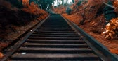 titokzatos : Walking up and down old staircase. Personal perspective point of view - colored video in slow motion Stock mozgókép