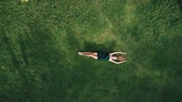 zumbido : Aerial top view of happy woman relaxing on the grass during sunny summer day