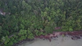 činnost : Aerial drone view of Mu Ko Phetra National Park during cloudy morning, Satun, Thailand