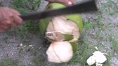 tropikal meyve : Closeup mans hands cutting coconut on the ground, Thailand Stok Video