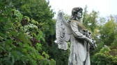 angel : Sculpture of stone angel praying at the cemetery Stock Footage