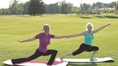 facing down : Senior fit women practicing yoga in the park