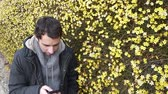 Young man using smart phone next to yellow flowers - slow zoom out
