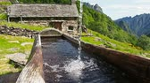 trough : Fresh water running in trough in the Italian mountains (Full HD)