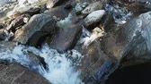 Creek purity water stream wtih rocks flowing outdoors Stock Footage