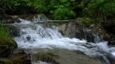 River or waterfall stream in the nature with water (4k) Stock Footage