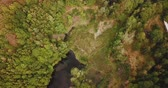 klid : Overhead tracking shot of Asberg forest with lake and surrounding trees during summer (4k)