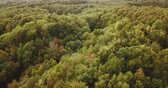 Aerial panoramic view of forest landscape in Germany during summer with lake (4k) Stock Footage