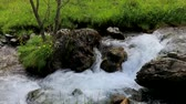 pireneusok : Wild stream in a summer day mountain scenery in the Pyrenees (HD) Stock mozgókép