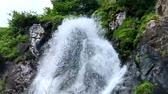şelaleler : Wild river streams into a waterfall in a mountain landscape (HD) Stok Video