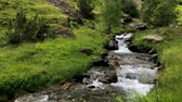 牧歌的な : Wild stream moves along a summer mountain scenery in the Pyrenees (HD)